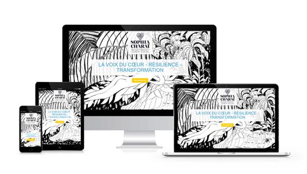 représentation du site sur différents supports